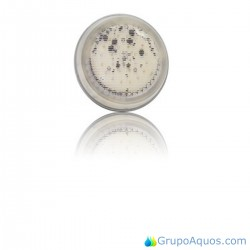 Lampara PAR56 RGB DMX 2.0 - 45637